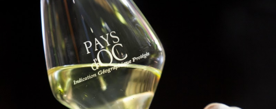 Pays d'Oc pop-up wine bar voor 12 dagen in Odeon Amsterdam