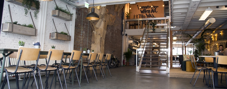 BACKYARD: plant based & vegan friendly restaurant in Rotterdam.